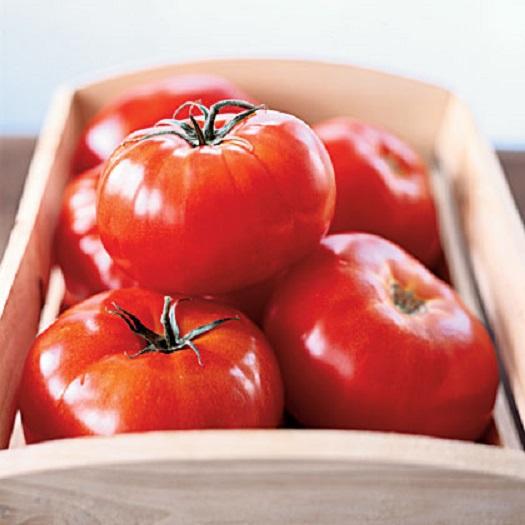 tomatoseason