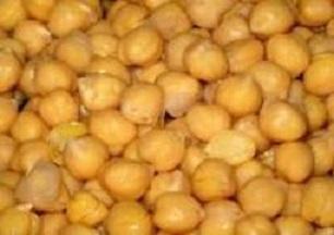 beans4