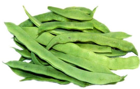 beans_pole_kwintus
