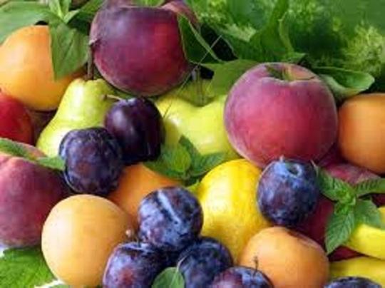 fruitcover