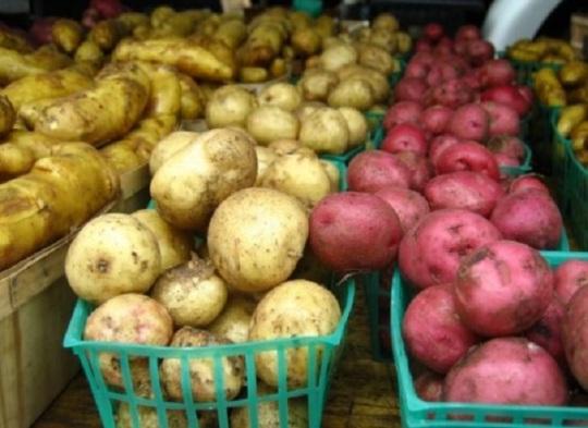 potatocover