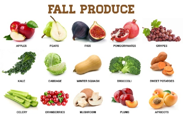 fallproducecover