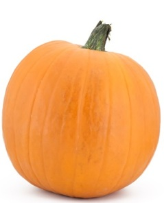 Large pumpkin on a white back ground
