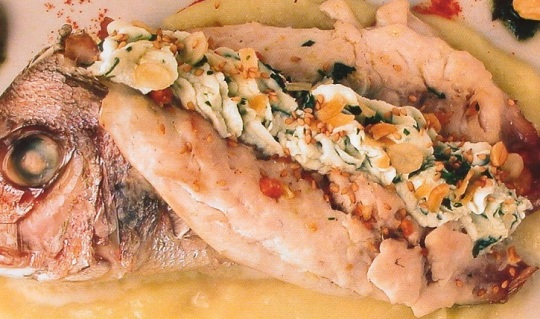 catanzarofish