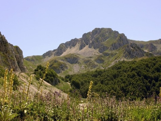 Mount Terminillo in summer.
